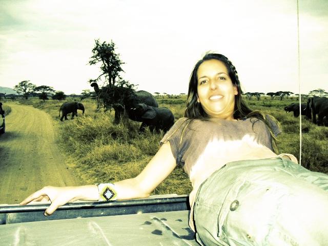 Fotografias com elefantes fora do jipe