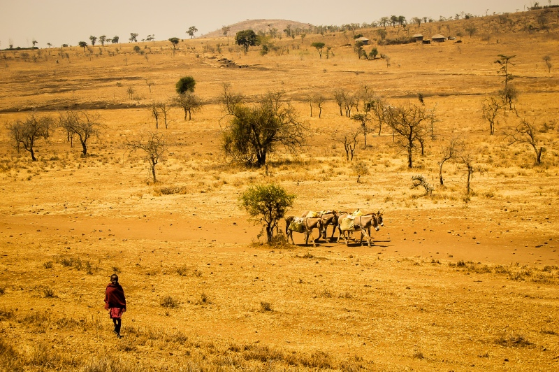 Menino e aldeia Maasai